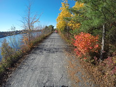 The B.L.T. Trail