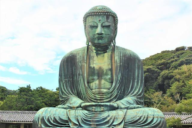 kotokuin-daibutsu005