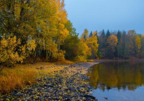 water lake shore bay trees forest wood autumn fall maridalen maridalsvannet lakemaridal kjelsås oslo norway