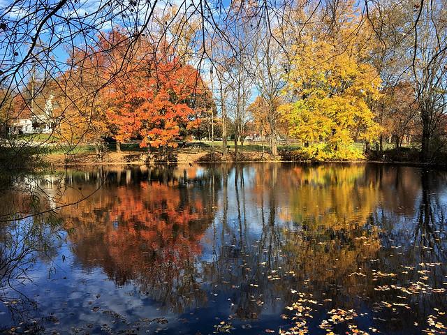 Garrison Forest ~ Fall reflection