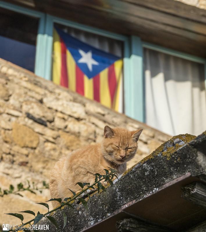 Spain - 0310