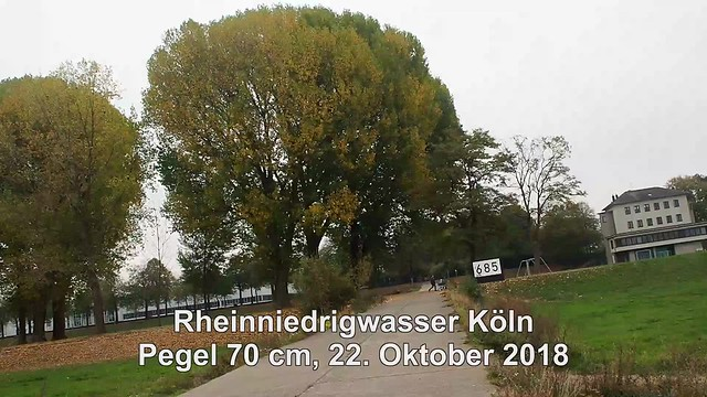 685 r Rheinniedrigwasser Köln 2018 Video