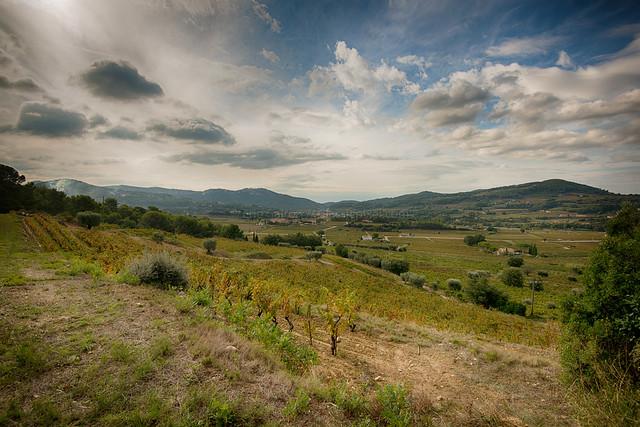 Landscape near Le Castellet