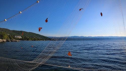 croatia lovran net fishingnet morning adria leaves blue