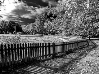 Shadow Fencing | by harry.cutts