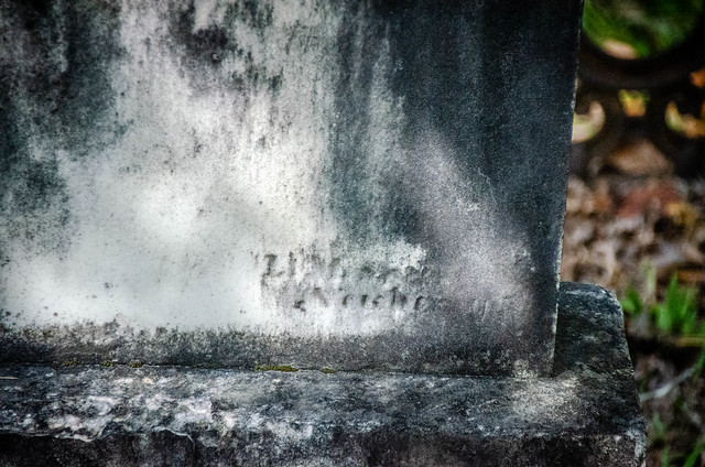 Sardis Methodist Church Cemetery-024