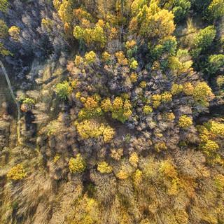 Glen Major Aerial October I.bottom