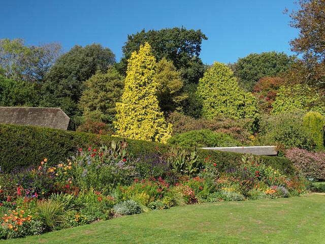 Mottistone Gardens-MA094988