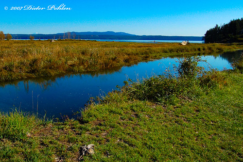 usa washington dosewallips state park hood canals landschaft