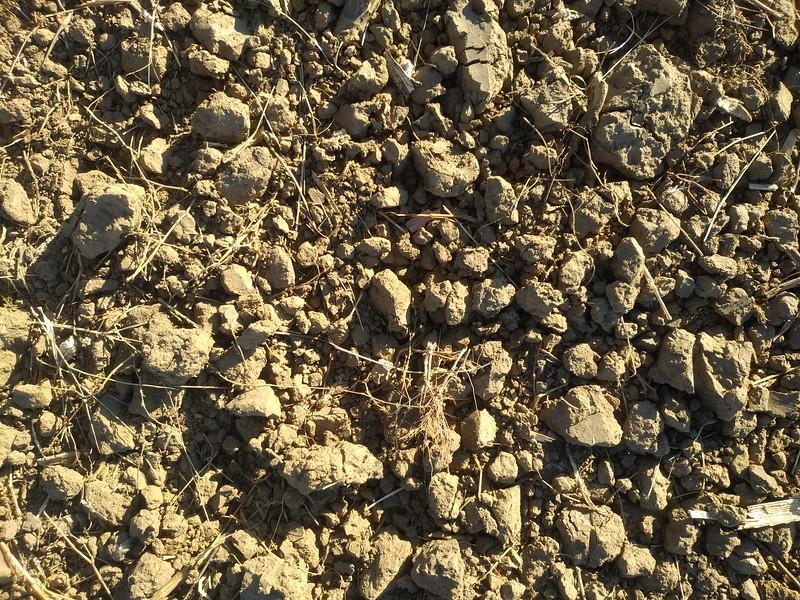 Ground texture #10