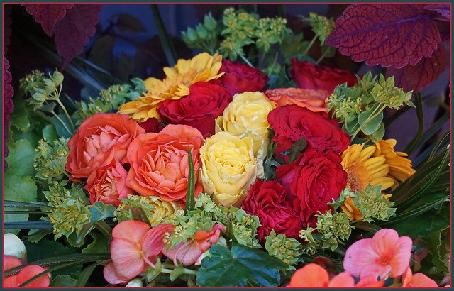 Herbstliche Blumengrüße ...