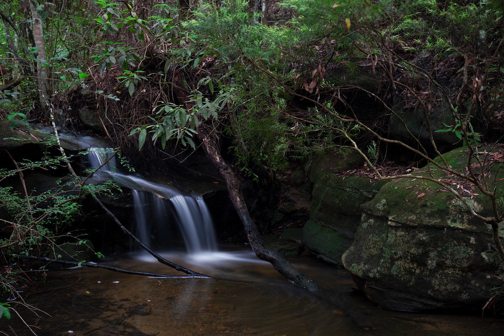 Joe Craft Creek Falls