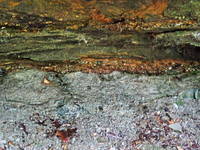 Pebbly sandstones over mudshales (Mississippian-Pennsylvanian unconformity; Mary Campbell Cave, Cuyahoga Gorge, Cuyahoga Falls, Ohio, USA) 2