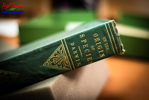 antique bokeh book charlesdarwin firstedition florida floridastateuniversity fsu old ontheoriginofthespecies readingroom researchcenter signed specialcollections strozierlibrary tallahassee travel vacation unitedstatesofamerica 840 nikond750 50mmf18 niftyfifty