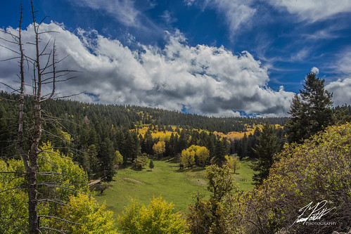 Fall in the Mountains | by Frank Portillo