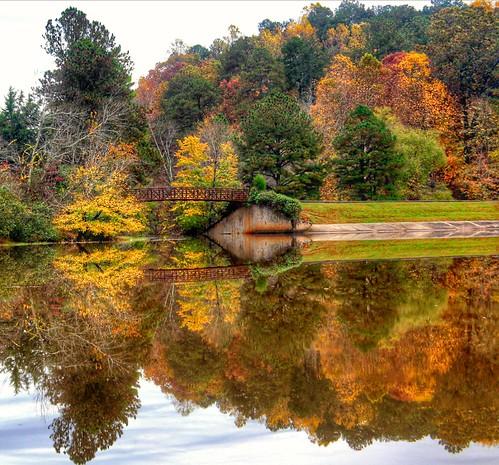 williamumsteadstatepark northcarolina autumnleaves trees