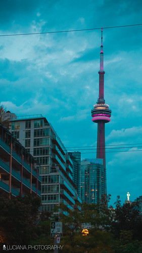 TORONTO | by Luciana Couto