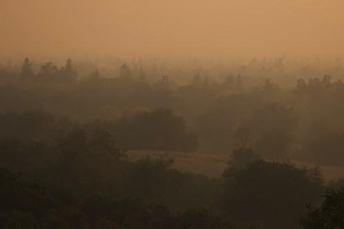 california fire landscape nature smoke trees