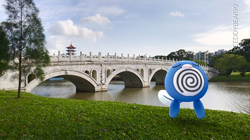 060 Poliwag (position=right)