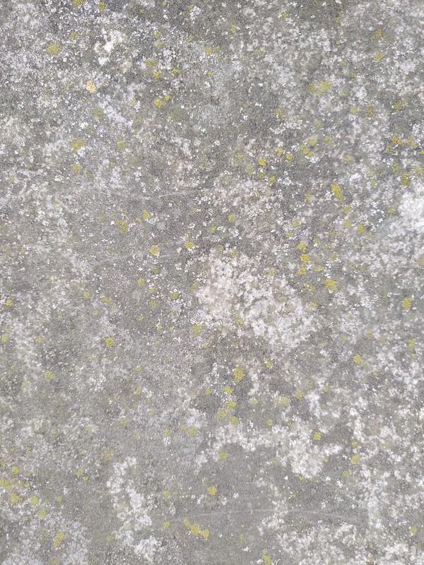 Concrete texture #43