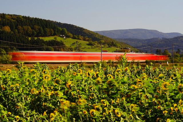 RE 4720 zwischen Biberach und Gengenbach