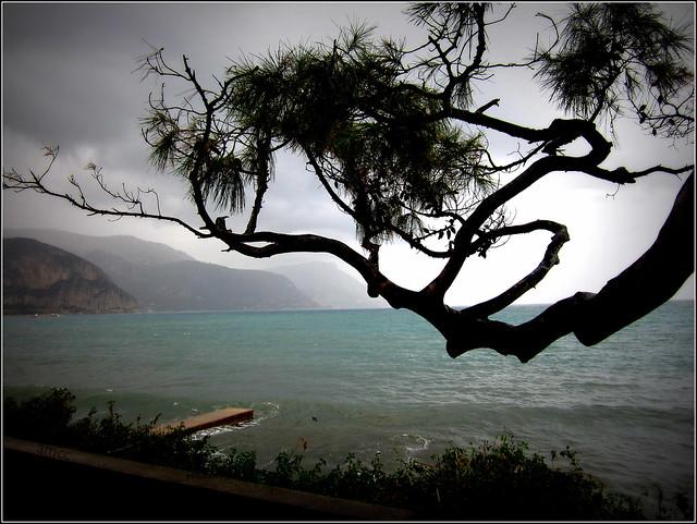 il pleut, parfois, au bord de mer...