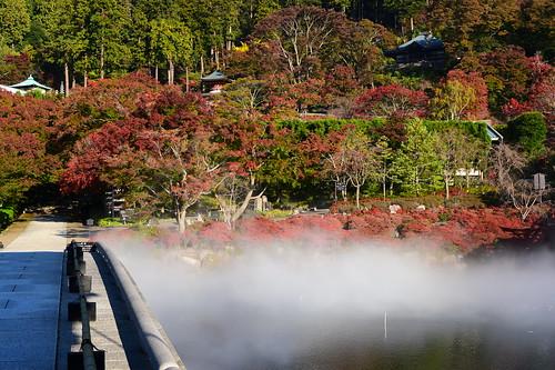 勝尾寺 | by taoweblog