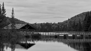 lac Cordon3 | by bengraph