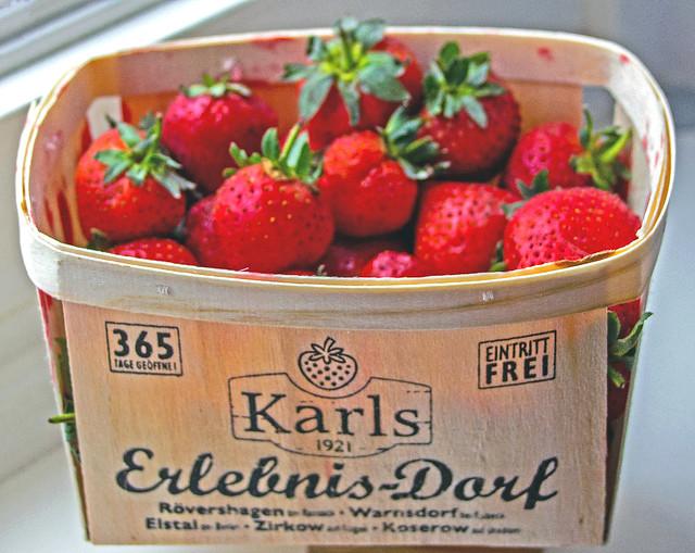 Erdbeeren im Oktober, IMG_1017_b-1