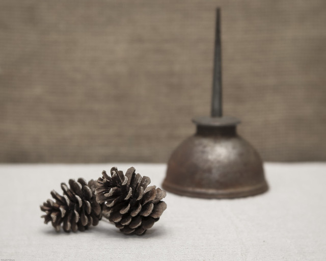 Still Life with Pine Cones and Rusty Oil Can
