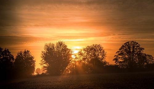 dawn sunrise wortonwoods