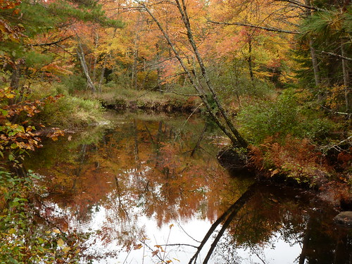 northernrailtrail newhampshire newengland river reflections fallfoliage