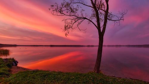 estonia mavic2pro tartucounty tartumaa aerial aerophoto autumn dronephoto lake outdoor seascape sky sunset saadjärv