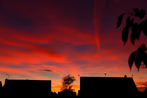 silhouette roof sunset urban houses burtonuponstather leaves colourful reds oranges sky