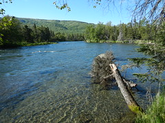 upper Brooks River_06082018