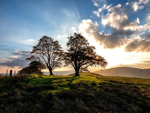 ianwright 2018 blip finwrightphotographycouk ian fin canon g1xmkii shropshire southshropshire bishopscastle hill hills autumn trees tree sunset sun sky linley linleybeeches finwright
