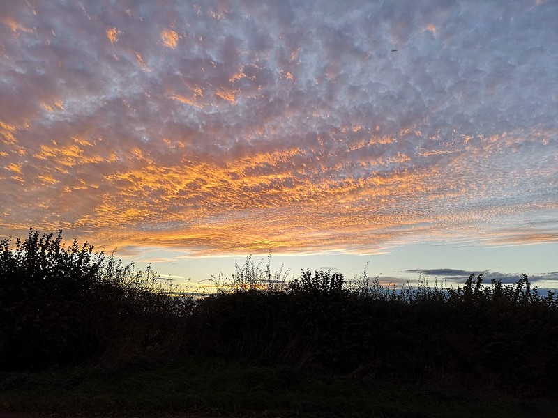 Sunset skies [explored]