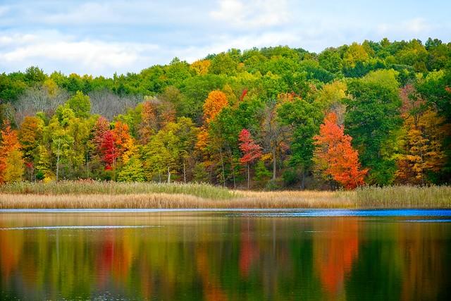 Fall Colors_3 copy