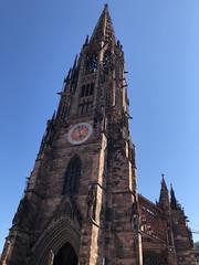 Freiburg: Münster