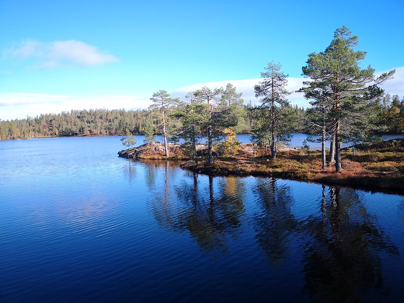 11-Flagervann