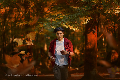 fallen leaves in the woods in autumn and jogging boy | by edoardo.gobattoni