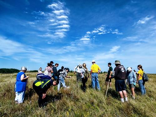 Blanket Flower Prairie Scientific and Natural Area