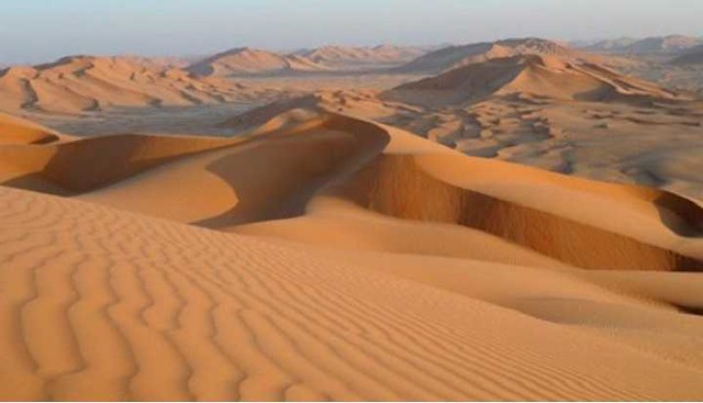 4748 Do you know that Saudi desert used to be a Green Jungle 01