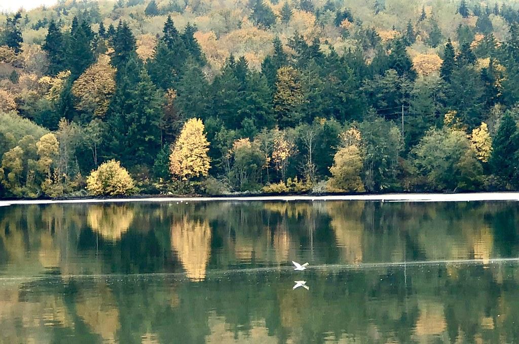 Discovery Bay Northern Peninsula Of Washington Rick Flickr