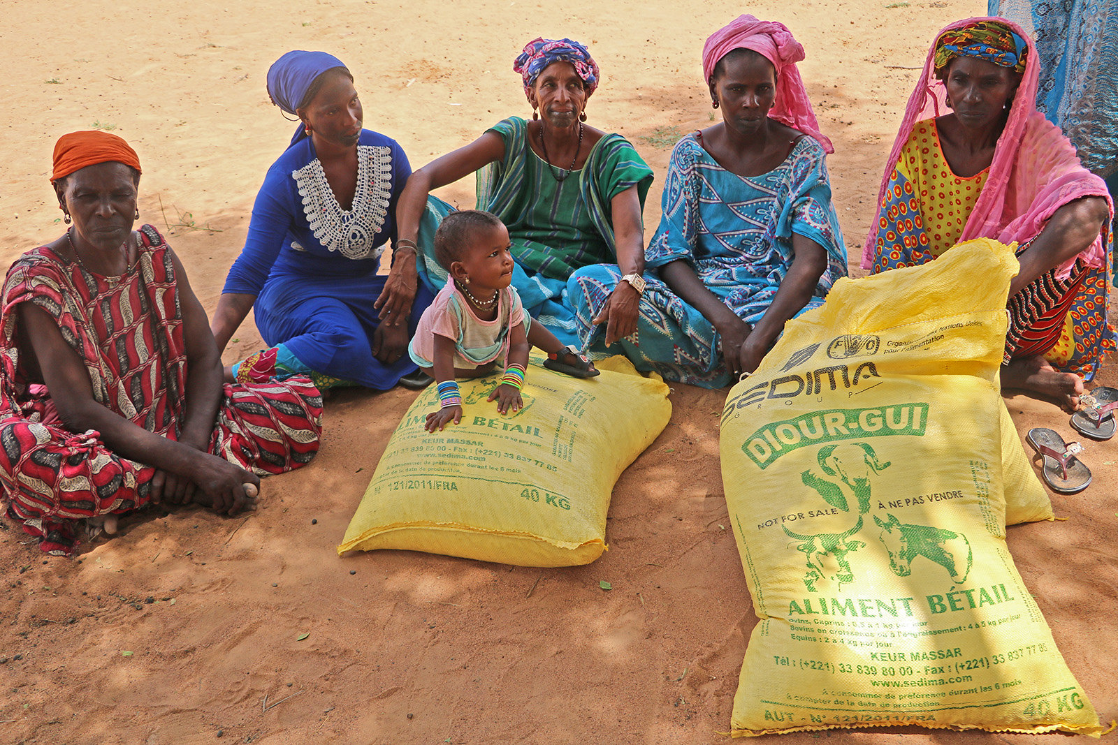 FAO supports pastoralist communities in northern Senegal