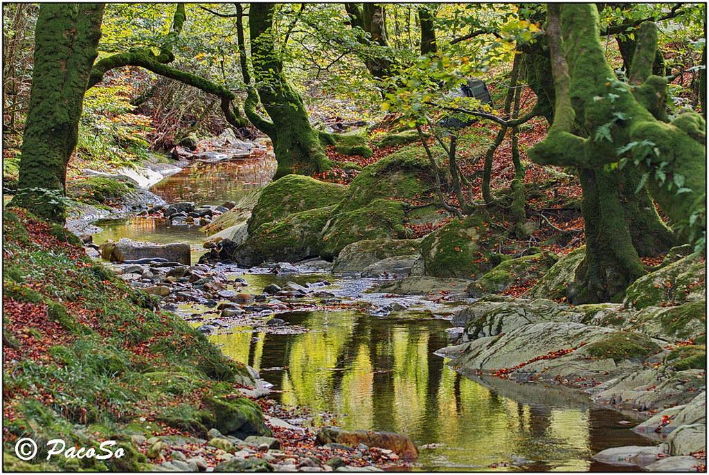 Río Erro, estiaje | Río Erro en su cabecera, con muy poca ag… | Flickr