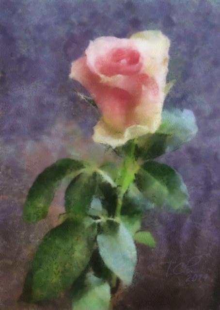 Роза акварелью по мокрому / Rose watercolor on the wet