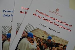 Promozione e formazione dei fedeli laici: buone pratiche