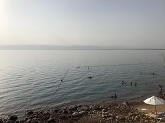 The Marriot Beach, the Dead Sea Marriott Resort & Spa, Jordan.