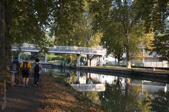 Petite sortie matinale au long du canal